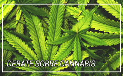 Debate sobre Cannabis